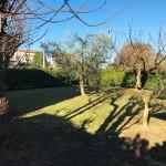Vendesi-calcinato-appartamento-terreno3